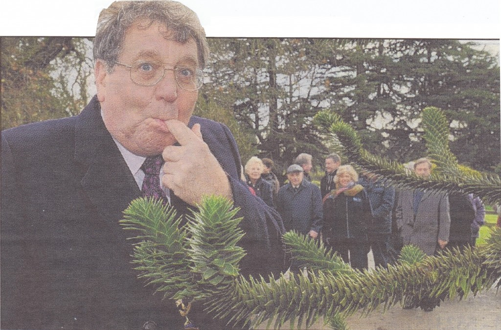Monkeying Around: Mayor Keith Blake realises that the monkey tree has some sharp needles