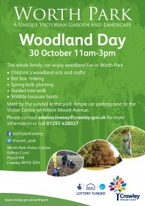 woodland fun day poster