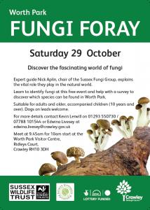 fungi-foray
